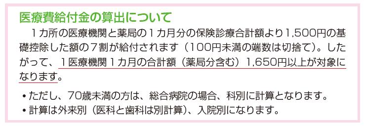 iryohi2-1